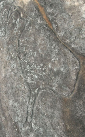 emu rock Engraving
