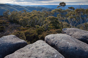 North from Colboyd Range to Mt Cloudmaker and lower Kowmung country