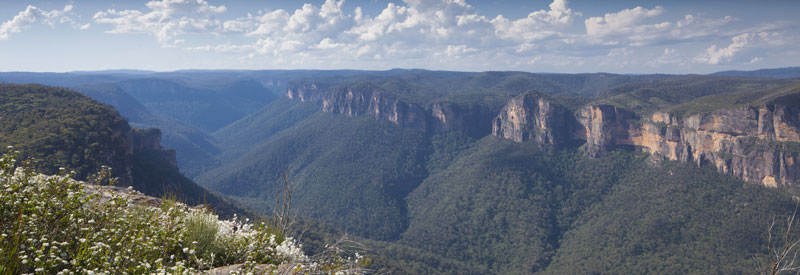 Looking up the Grose Valley from Anvil Rock